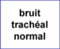 bruit-tracheal-normal